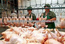 Halal Frozen Chicken 3 Joint Wings