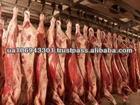 Frozen horse meat