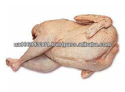 Ukraine HALAL Poultry - whole frozen chicken