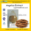GMP&BV Factory Supply Hot Sale Angelica Sinensis Extract