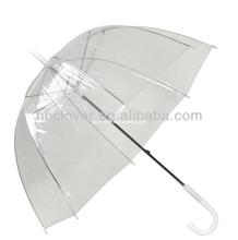 poe umbrella/Transparent Umbrella/clear umbrella