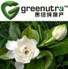 cape jasmine fruit extract