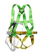 Full Body Harness with Single Lanyard