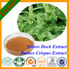 Herb Medicine Extract High Quality Rhein