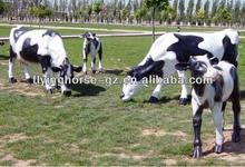 CS-010 Fiberglass Life Size Decorative Cow Statue for Sale