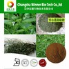 ISO&GMP factory supply Andrographolides Andrographis paniculata Extract