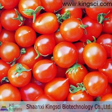 Best price and high quality 100% Natural Lycopene 5%-98%