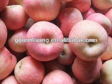2014 fresh fuji apple hot sale in China(apple:fuji, huaniu, gala, golden,qingguan, red star)