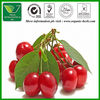 100% Natural Acerola Cherry Fruit Extract Powder 10:1,5:1