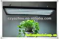 2ft 4ft luces led para el cultivo de plantas/t5 fluorescentes crece la luz accesorio/decorativos de interior de la planta crece la luz