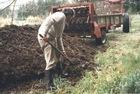 natural fertilizer manure