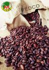 FEDCO Cacao Beans