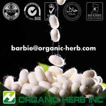 Silk peptide/Silk amino acid/Silk protein powder
