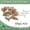 Kosher & Halal Gallnut Extract 476-66-4 Ellagic Acid from 3WBE