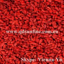 chinese goji berry fruit