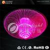 Fiber Optical Lighting Guzhen Lighting Lamp