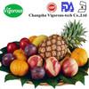 organic apple juice powder/bulk juice powder/spray dried juice powder