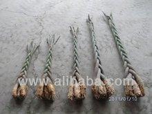 Pachira Aquatica,bonsai,plant,plants,house plant,house plants,indoor plant, indoor plants,garden plants