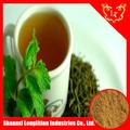 estratto di tè verde alla rinfusa