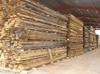 OAK - European White Oak Lumber