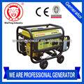 nuevo 2014 3kw tipo portátil generador de energía eléctrica proveedor de gas