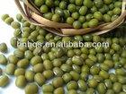 Chinese Mung Beans / Green Beans