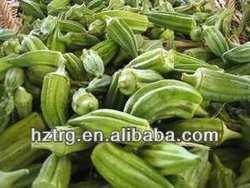dried okra powder/ okra/okra extract Powder