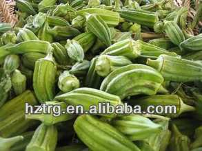dried okra powder/ okra/okra extract Powder