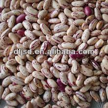 2012 new crop speckled kidney beans heilongjiang origin kidney beans