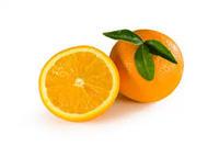 Orange Oil Wholesale..USA Origin