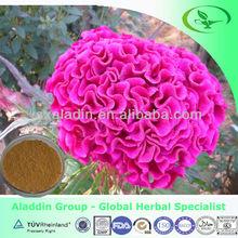 Plant extract Cockscomb Flower Extract