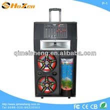 "2014 new product active big trolley bluetooth speaker 10"" subwoofer with fish tnak P-1"
