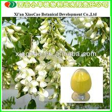 Lowest Quercetin Price/Quercetin Plant Extract/Standard Quercetin