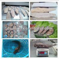 Frozen catfish whole round/catfish steak/catfish fillet