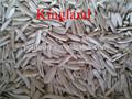 Nueva cosecha de larga tipo de semillas de girasol blanco/del núcleo de alta calidad para comestibles