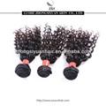 zsy usine de cheveux vendre société cheveux indiens