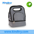Picnic Plus Insulated Lunch Tote Cooler