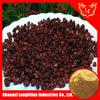 fructus schisandra extract powder
