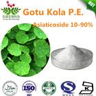 Asiaticoside 10% 20% 40% 90% Gotu Kola P.E.