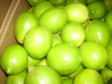 Lemon ( Lime )