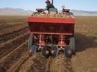 Automatic Two -Row Potato Planter