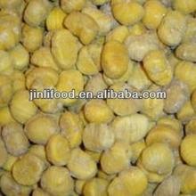 nuovo raccolto di alta qualità kernel castagne sbucciate