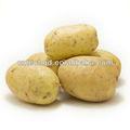 Mejor precio chino fresco de la patata para Dubai mercado con la mejor calidad
