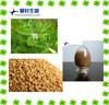 Fenugreek Extract Furostanol Saponins CAS 55056-80-9