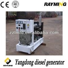 small dynamo generator,small permanent magnet generators