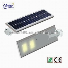 2013 new product with CE/ROHS/IP65 approve village green solar lights