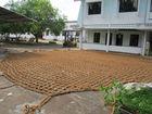 Coconut fiber net