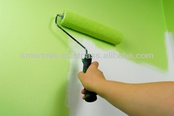Interior & Exterior Wall Paint