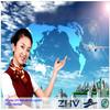 guangzhou LCL sea shipping/sea freight agent/WCA member