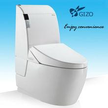 executive plastic toilets